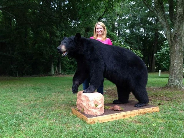 Natalie Tolbert Giant Black Bear!