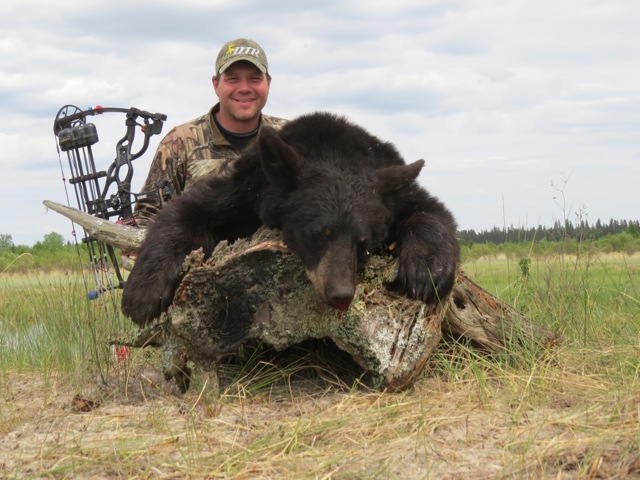Another Black Bear down at Buck Paradise