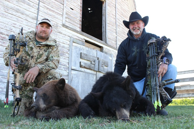 2015 bear tally is rising