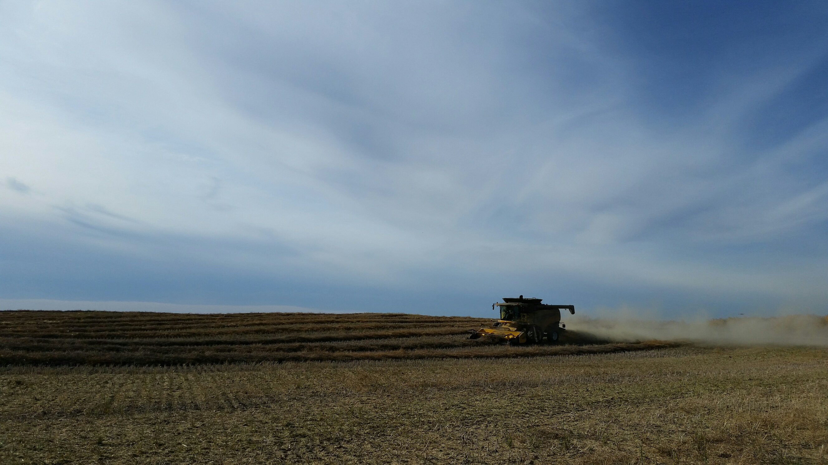 Beautiful day for combining!!
