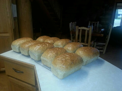 Jane's fresh loaves