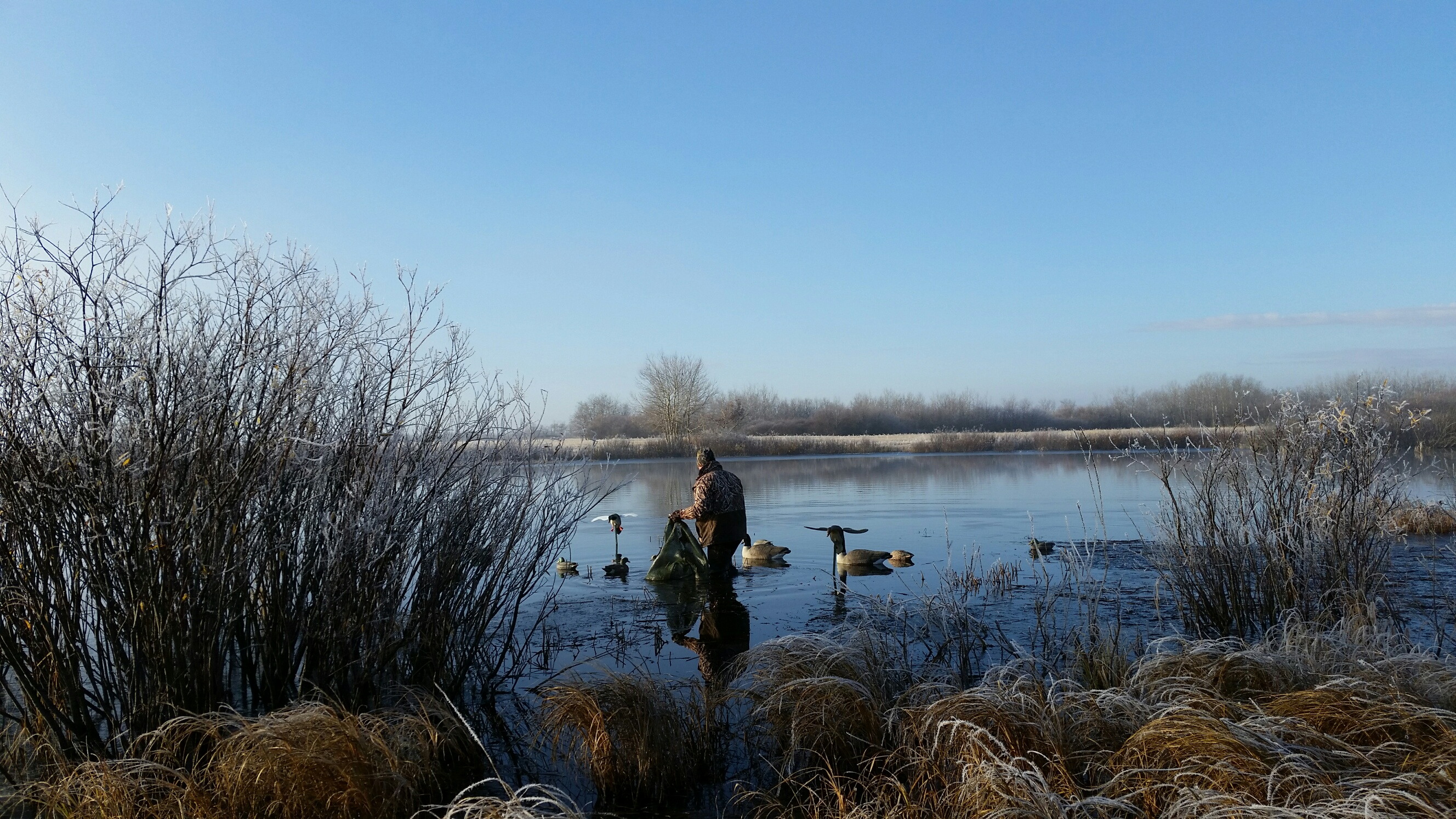 Barcley collecting the decoys