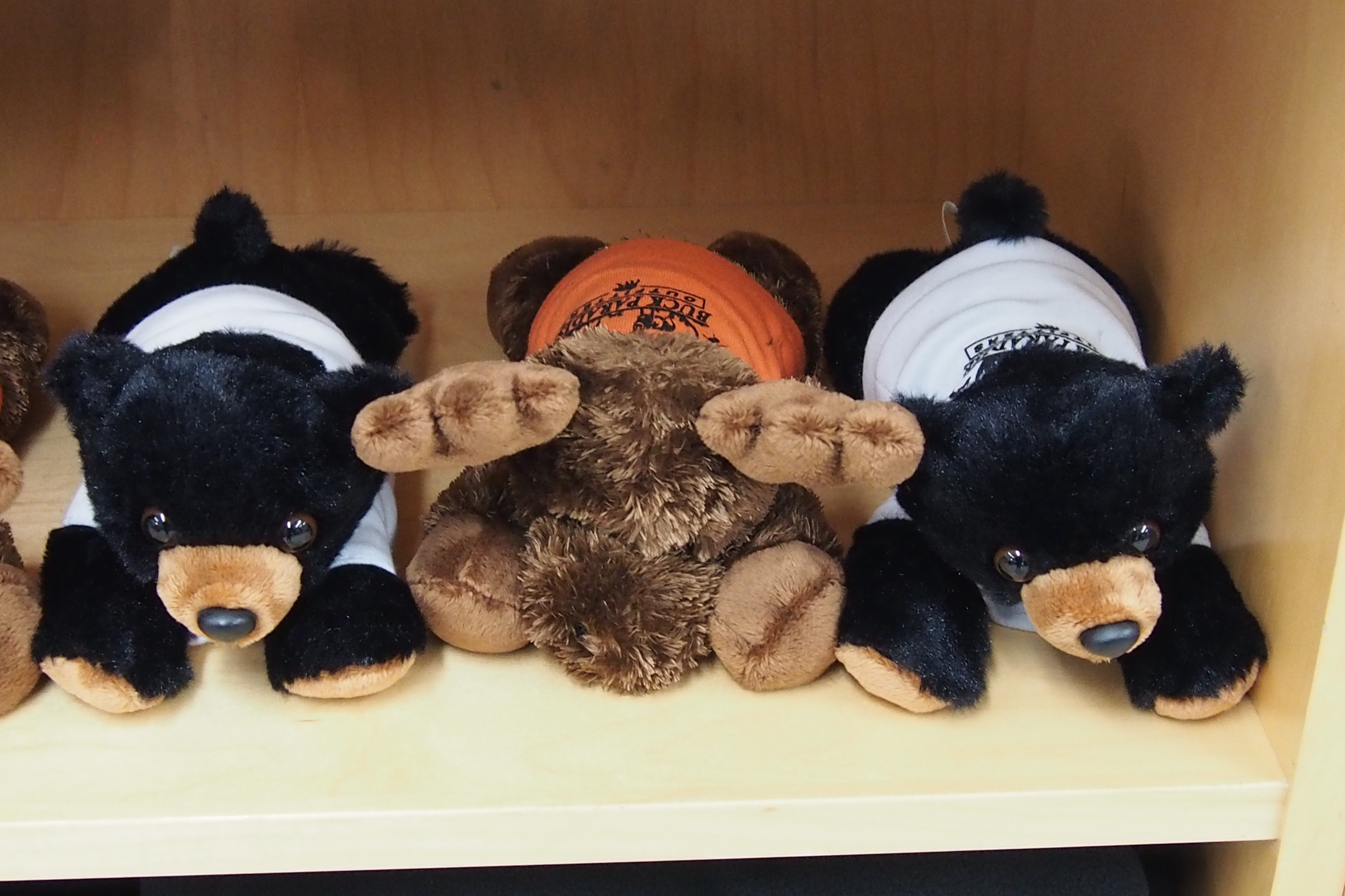 Soft Moose and Bear Teddies